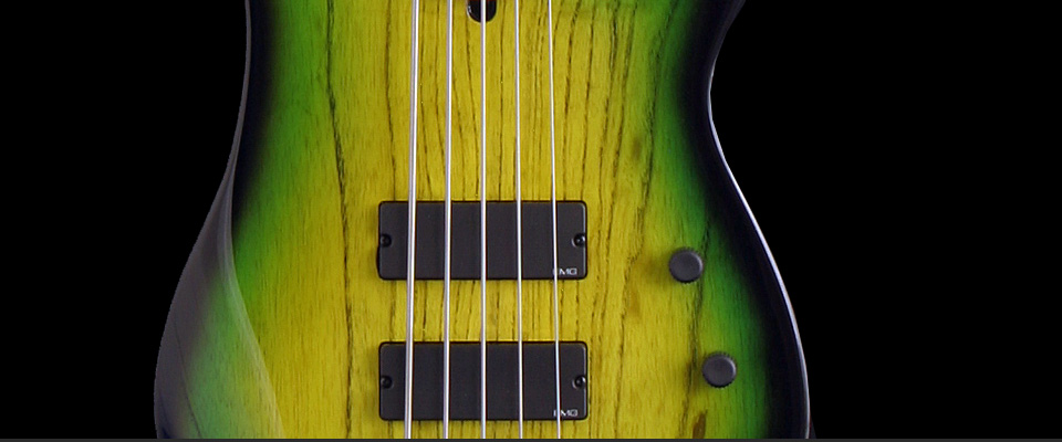 Tino Tedesco Basses - ...it's all about bass